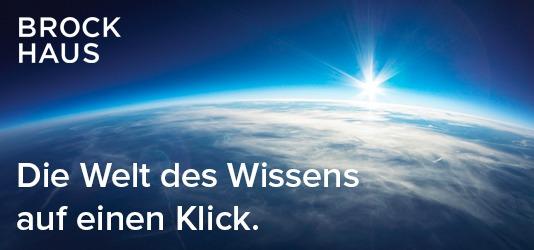 Brockhaus - Die Welt des Wissens